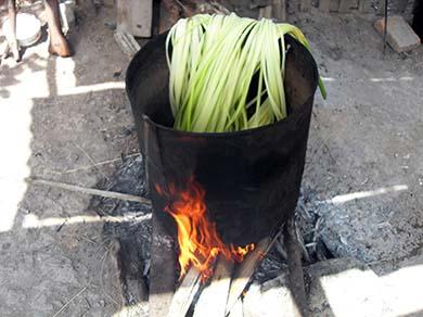 Boiling Toquilla Stalks