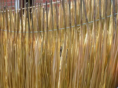 Sun Dried Toquilla Straw