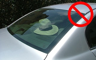 Hat in Car